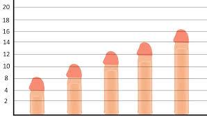 طول العضو الذكري